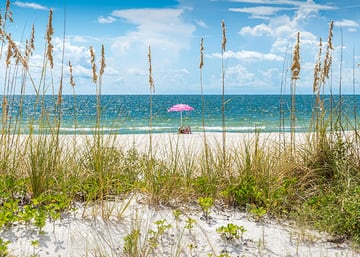 Mobile/Baldwin County and Alabama Beaches
