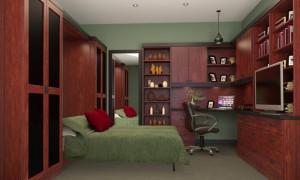 Murphy Bed Closet Factory