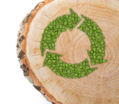 Remember Earth Day Everyday: Reduce Your Clutter, Recycle, and Reuse