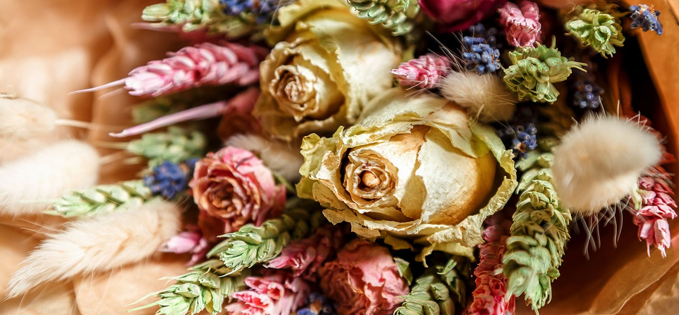 dry roses in white and pink
