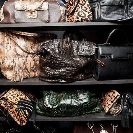 handbags shared closet soace with shoes