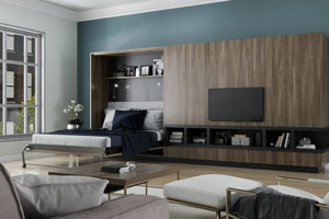 wood grain entertainment center with opened wall bed