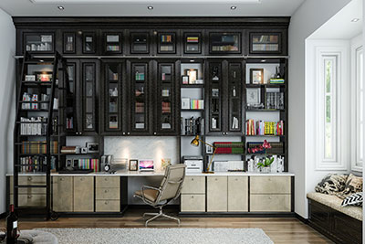 tall office unit with ladder