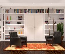 library with builtin wall bed