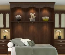 Open wall bed design shows a side fold bed in twin size